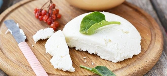 сыр из козьего творога в домашних условиях