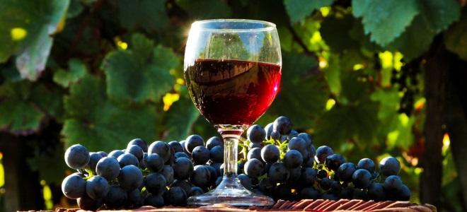 Рецепты виноградного вина в домашних условиях 130