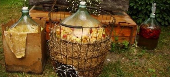 яблочная брага для кальвадоса