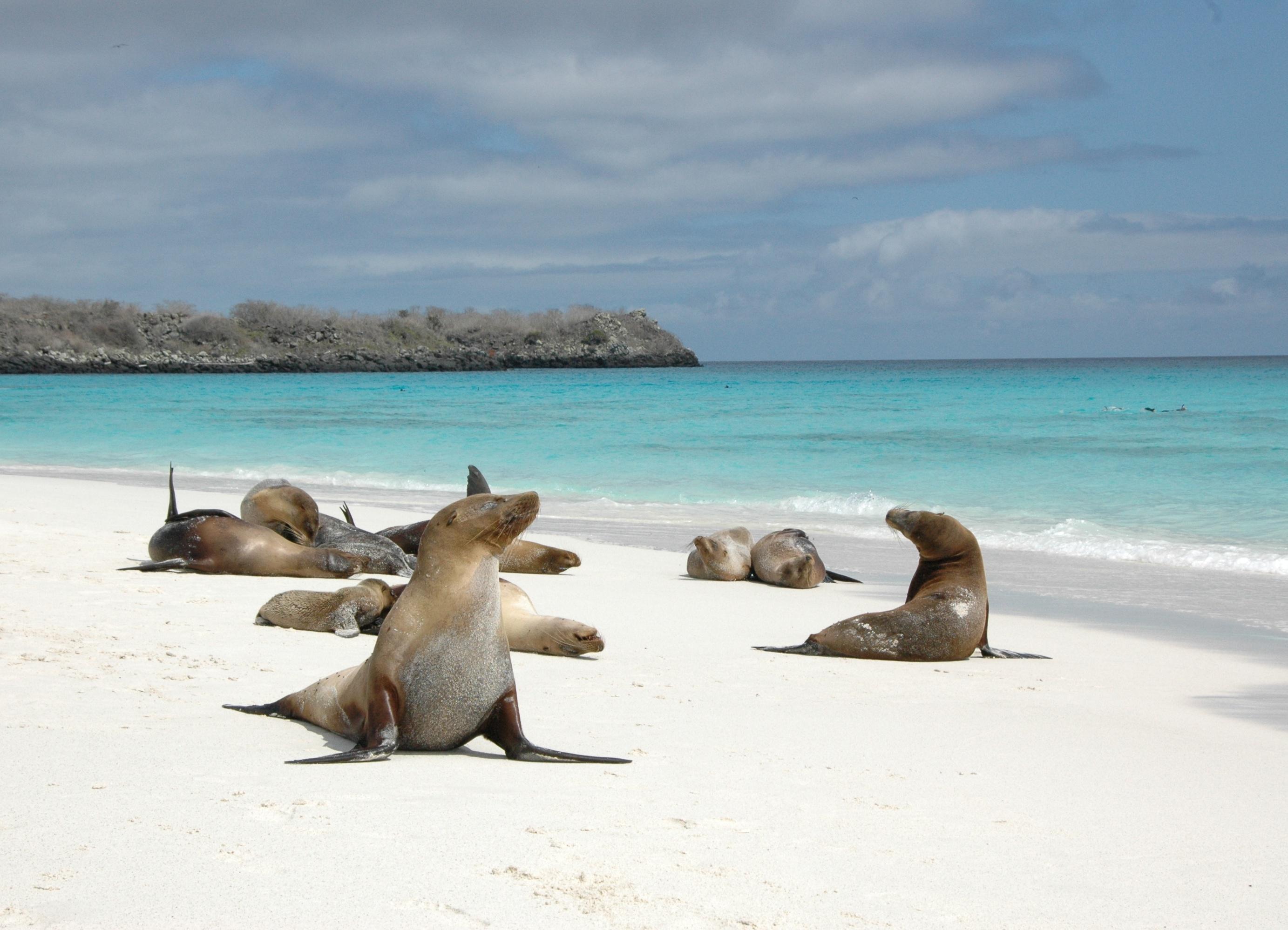 смысл эквадор фото пляжей само слово