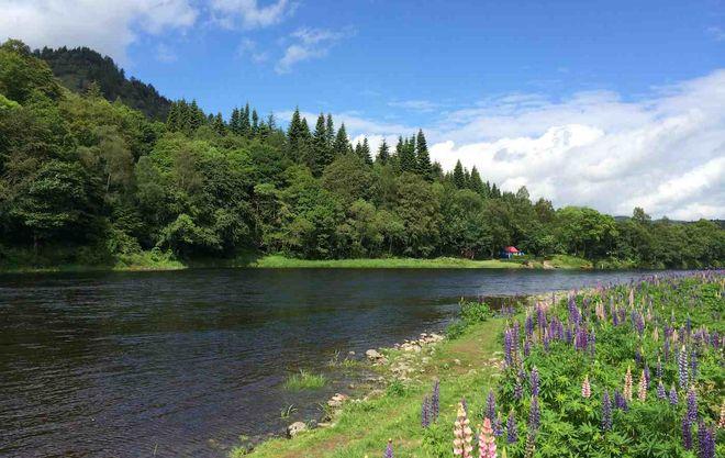 Река Тей, Шотландия