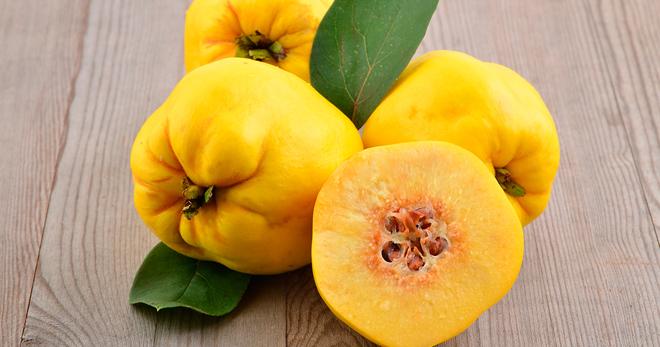 Айва – польза и вред для здоровья описание и состав фрукта, полезные свойства и противопоказания