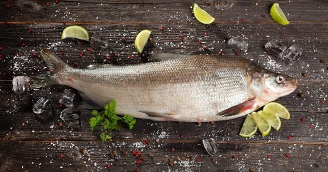 Рыба муксун – фаршированная, запеченная, маринованная, валенная, соленая, горячего и холодного копчения