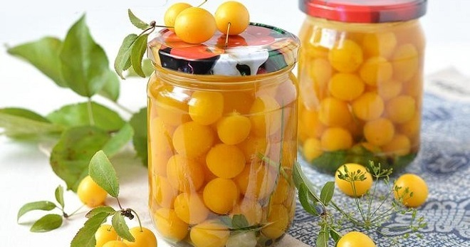 Заготовки из алычи: 18 рецептов приготовления консервации на зиму, как закрыть