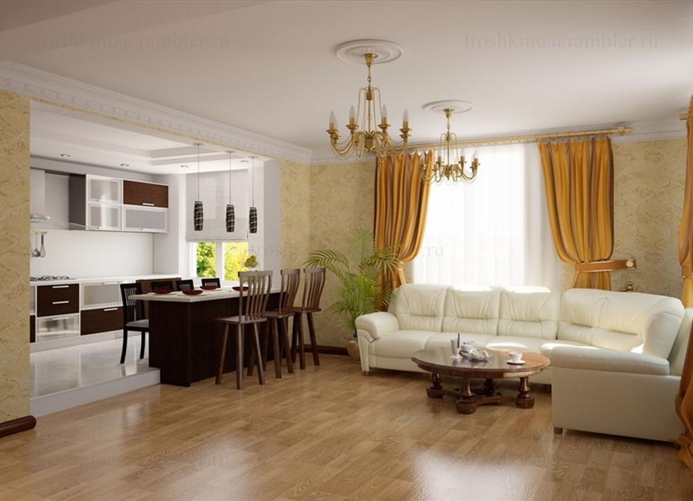 кухня соединенная с гостиной фото