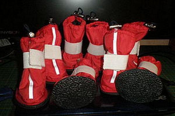 Обувь для собак своими руками6 d1552ccbbd3