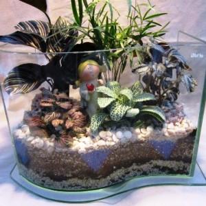 Флорариум из аквариума своими руками 238