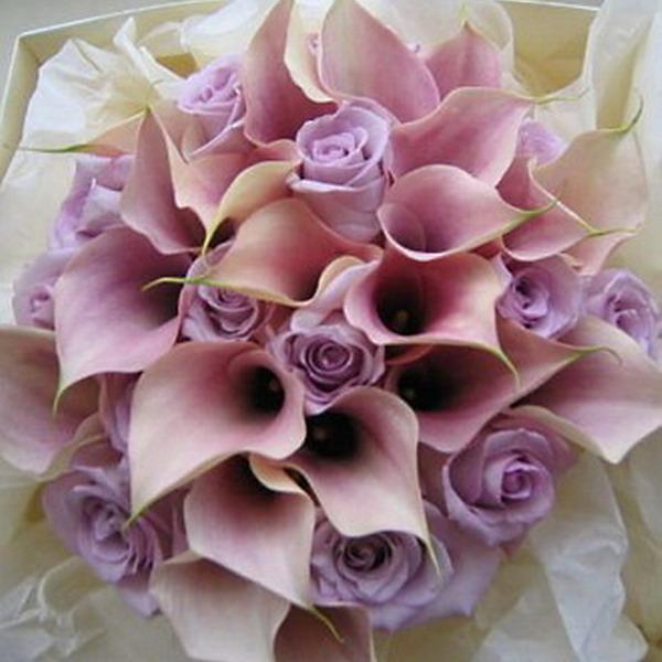 фото цветов с кольцами