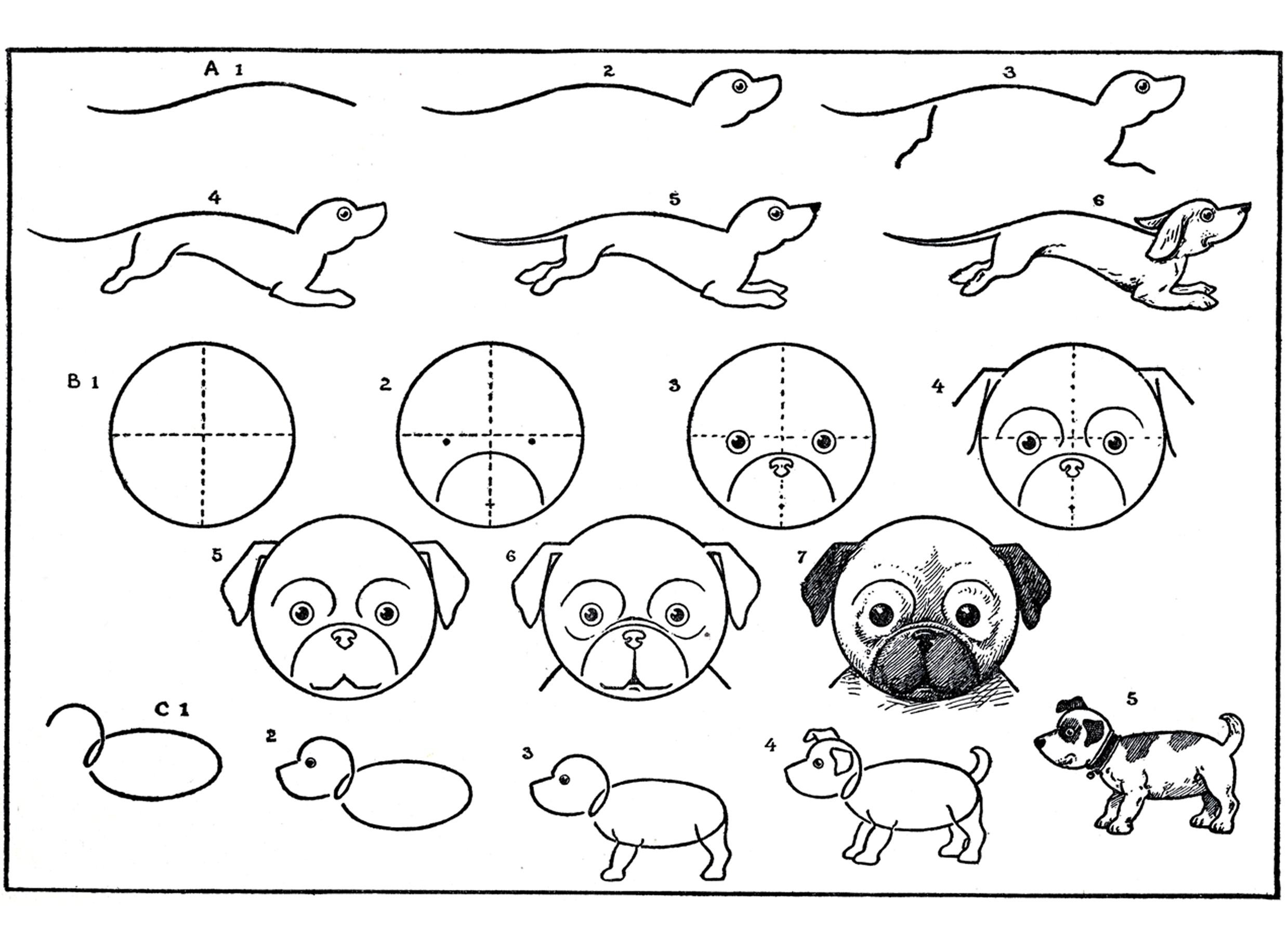 Картинки с животными нарисованные карандашом для детей, спокойной ночи картинках