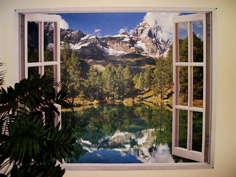 фотообои окно вид из окна растение было