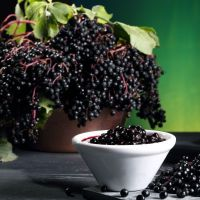 Чем полезно варенье из черной бузины #4