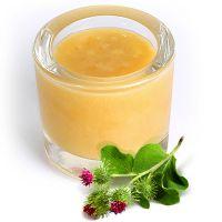 мед расторопши польза и вред