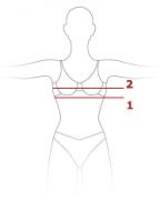 03f8750c56c25 Как узнать размер груди: способы определения и фото размеров бюста
