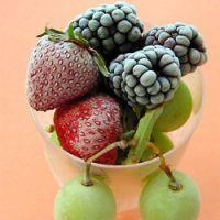 полезны ли замороженные ягоды