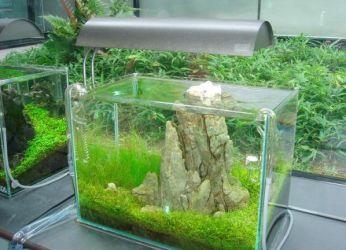 Как сделать светильник в аквариум своими руками 105