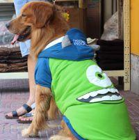 Одежда для больших собак8