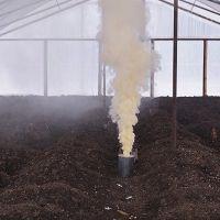Чем пролить землю от фитофторы осенью