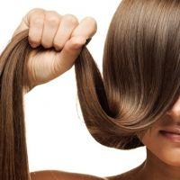 وصفات الألوة الشعر