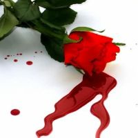 Может ли открыться кровотечение на нервной почве