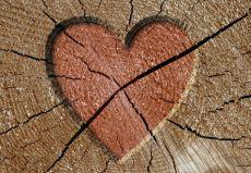 Больная любовь