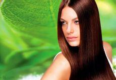 huile de cheveux de palme