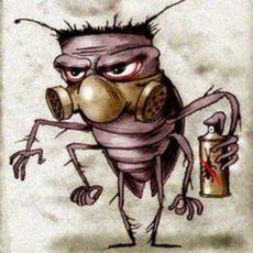 Почему ушли тараканы