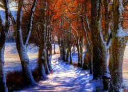 к чему снится первый снег