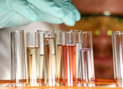 анализ крови билирубин норма у женщин