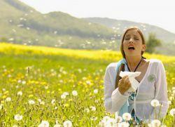 сезонная аллергия в августе