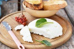 как сделать сыр сулугуни в домашних условиях