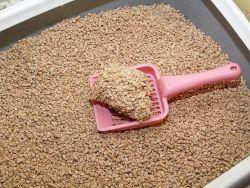 Закуска рафаэлло из крабовых палочек рецепт с фото Легкие