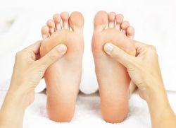 Ванга суставы ступней анатомия дугоотросчатый сустав в картинках