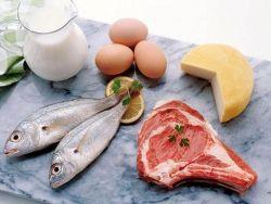 Белок в продуктах питания