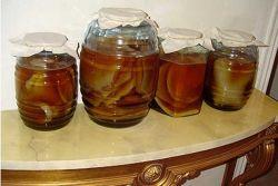 чайный гриб для похудения