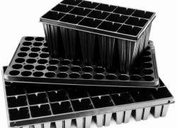 Выращивание рассады в кассетах 43
