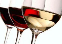 Когда во время беременности можно выпить вина
