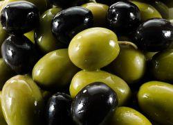 Консервированные оливки польза и вред