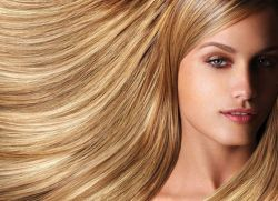 الشريط الشعر