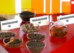монастырский чай от диабета рецепт
