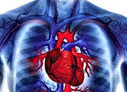 какие клапаны сердца наиболее часто поражаются при ревматизме