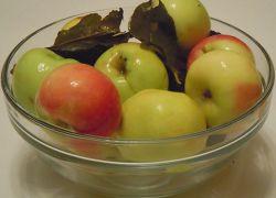 польза моченых яблок