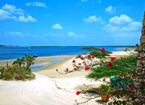 Девственная природа пляжа Ламу