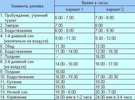 7f2b6a3a7437 режим ребенка в 9 месяцев. Питание ребенка в 9 месяцев - меню