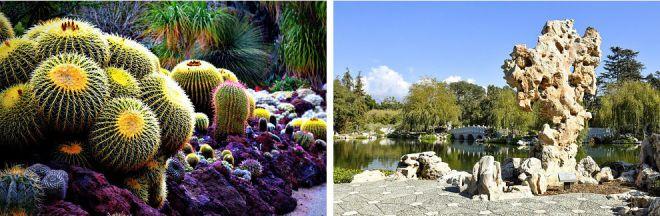 Библиотека Хантингтона и Ботанические сады 2