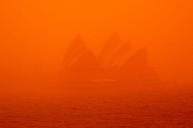 Оранжевые небеса