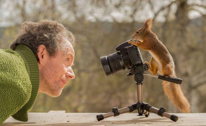 Белка на фотоаппарате