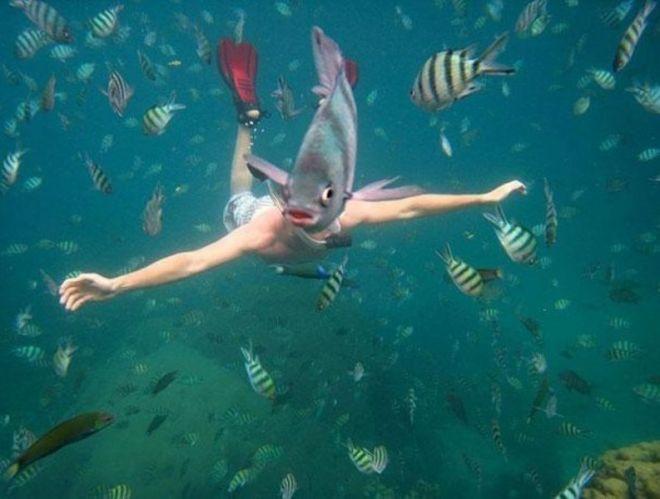 С рыбой вместо головы