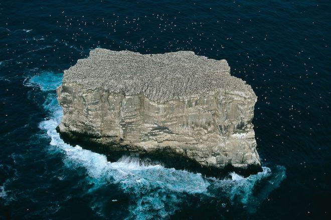 Остров Эльдей, Исландия