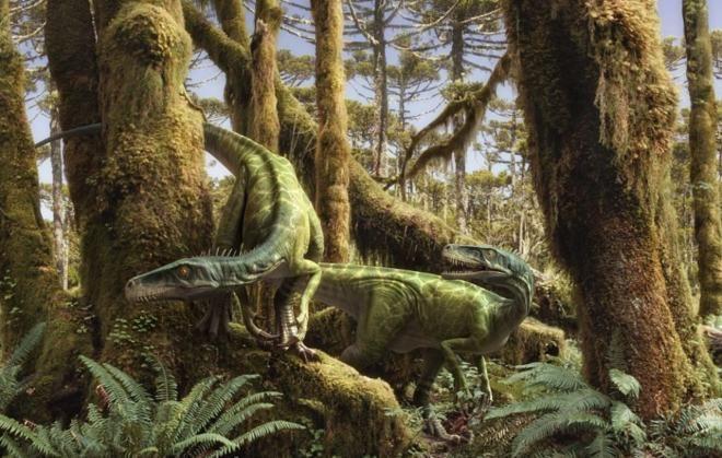 Загадка из эпохи динозавров.