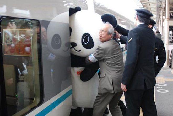 Человек запихивает панду в вагон